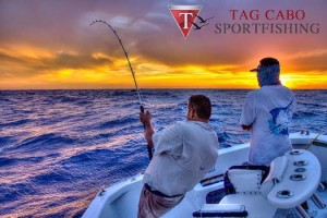 Cabo fishing charters