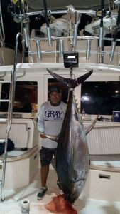 deep sea fishing in Cabo, Cabo yacht charters, Cabo sportfishing reports, Cabo fishing reports, Cabo sportfishing rentals, Cabo sportfishing charters, Gordo bank fishing,