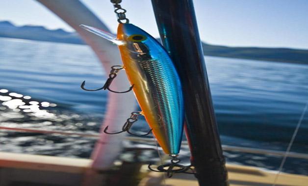 Sports Fishing Tag Cabo Sportfishing
