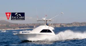 deep sea fishing in Cabo, Cabo yacht charters, Cabo sportfishing reports, Cabo fishing reports, Cabo sportfishing rentals, Cabo sportfishing charters, Gordo bank fishing,