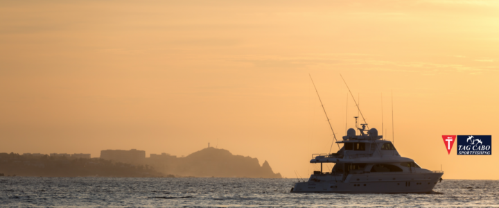 Cabo San Lucas: The Ultimate Summer Vacation Spot