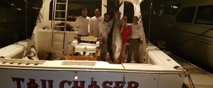 Cabo fishing report/ Cabo fishing reports