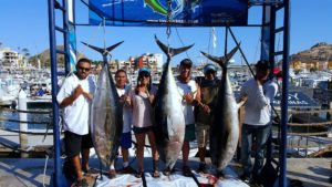 Deep sea fishing in Cabo, Cabo fishing reports, Cabo sportfishing reports, Cabo sportfishing rentals, Cabo luxury yacht charters, Cabo fishing rentals