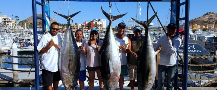 Deep Sea Fishing in Los Cabos: The Ultimate Vacation Experience