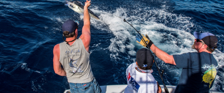 Renting a Fishing Charter for the First Time? You Need This Guide!